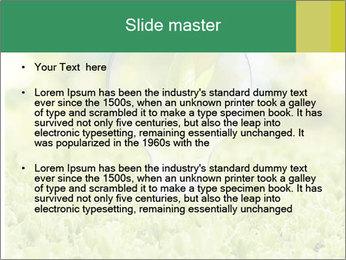 Green Light Bulb PowerPoint Template - Slide 2