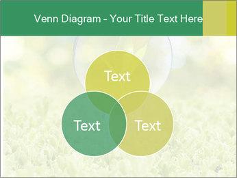 Green Light Bulb PowerPoint Template - Slide 33