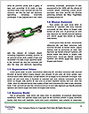 0000088962 Word Template - Page 4
