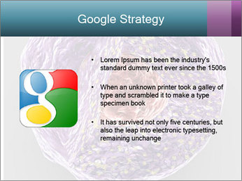 Lab Study PowerPoint Template - Slide 10