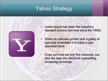 Lab Study PowerPoint Template - Slide 11