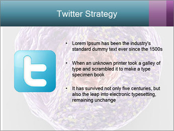 Lab Study PowerPoint Template - Slide 9