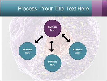 Lab Study PowerPoint Template - Slide 91