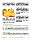 0000088977 Word Templates - Page 4