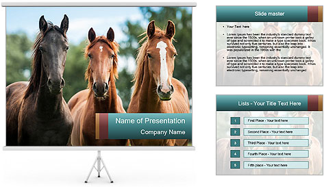 Three Beautiful Horses PowerPoint Template
