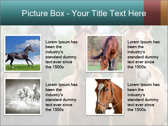 Three Beautiful Horses PowerPoint Template - Slide 14