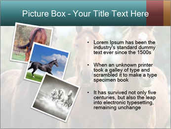 Three Beautiful Horses PowerPoint Template - Slide 17