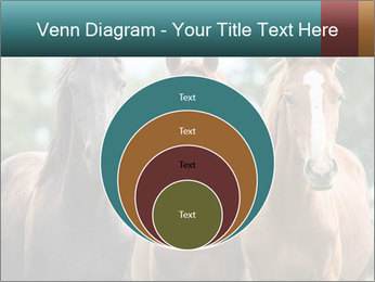 Three Beautiful Horses PowerPoint Template - Slide 34