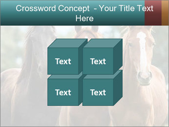 Three Beautiful Horses PowerPoint Template - Slide 39