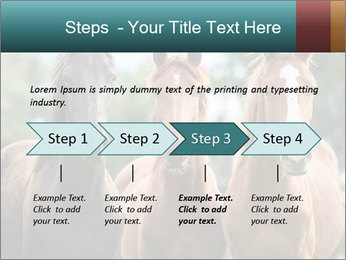 Three Beautiful Horses PowerPoint Template - Slide 4