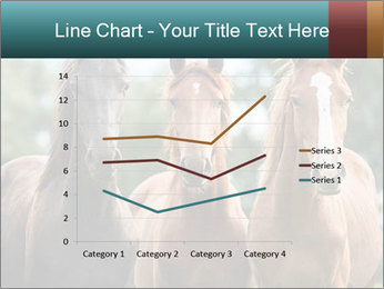 Three Beautiful Horses PowerPoint Template - Slide 54