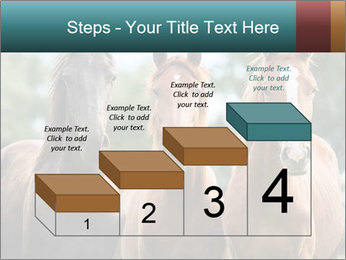 Three Beautiful Horses PowerPoint Template - Slide 64