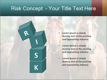 Three Beautiful Horses PowerPoint Template - Slide 81