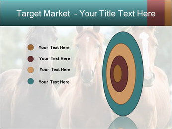 Three Beautiful Horses PowerPoint Template - Slide 84