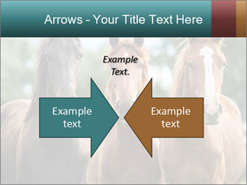 Three Beautiful Horses PowerPoint Template - Slide 90