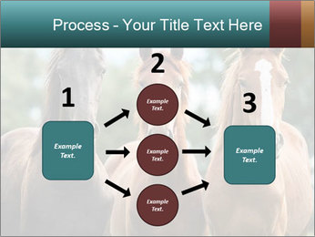 Three Beautiful Horses PowerPoint Template - Slide 92
