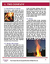 0000088981 Word Template - Page 3