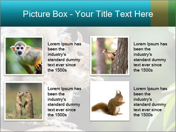 Cute Squirrel PowerPoint Template - Slide 14