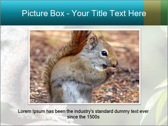Cute Squirrel PowerPoint Template - Slide 15