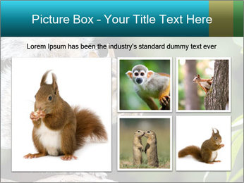 Cute Squirrel PowerPoint Template - Slide 19