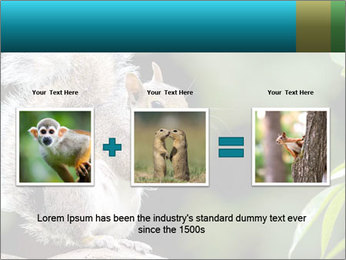 Cute Squirrel PowerPoint Template - Slide 22