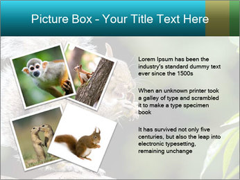 Cute Squirrel PowerPoint Template - Slide 23