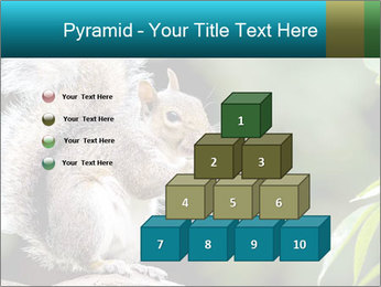 Cute Squirrel PowerPoint Template - Slide 31