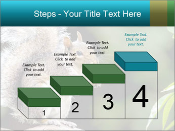 Cute Squirrel PowerPoint Templates - Slide 64