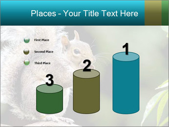 Cute Squirrel PowerPoint Template - Slide 65