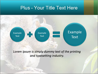 Cute Squirrel PowerPoint Template - Slide 75