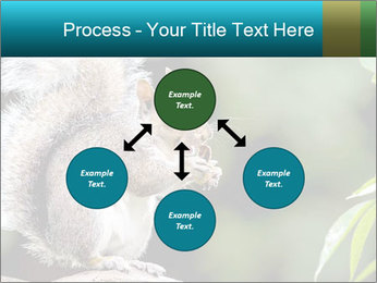Cute Squirrel PowerPoint Template - Slide 91
