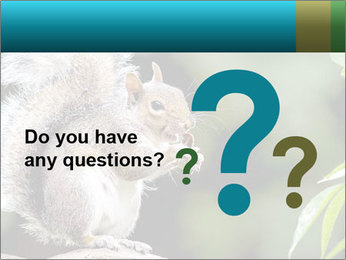 Cute Squirrel PowerPoint Template - Slide 96