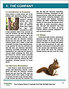 0000088985 Word Templates - Page 3