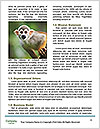 0000088985 Word Templates - Page 4