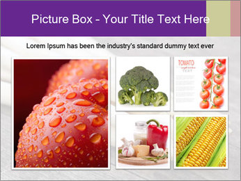 White Sprout PowerPoint Templates - Slide 19