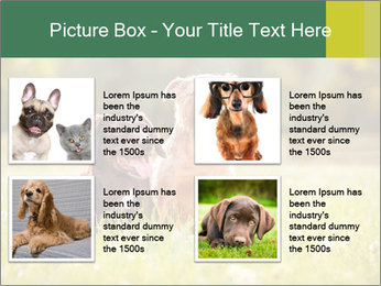 Two Dogs Friends PowerPoint Template - Slide 14