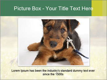 Two Dogs Friends PowerPoint Template - Slide 16