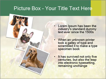 Two Dogs Friends PowerPoint Template - Slide 17