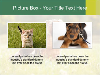 Two Dogs Friends PowerPoint Template - Slide 18