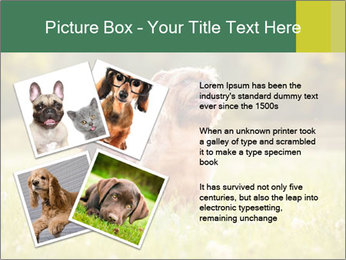 Two Dogs Friends PowerPoint Template - Slide 23
