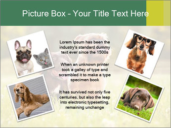 Two Dogs Friends PowerPoint Templates - Slide 24