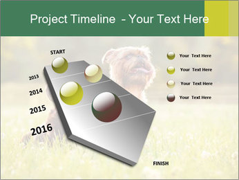 Two Dogs Friends PowerPoint Template - Slide 26