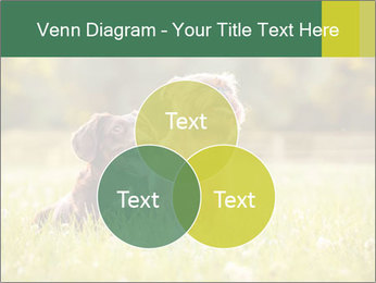 Two Dogs Friends PowerPoint Template - Slide 33