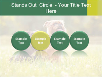 Two Dogs Friends PowerPoint Templates - Slide 76