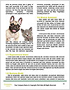 0000088990 Word Template - Page 4