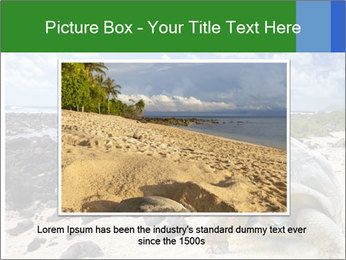Rocks And Turtle PowerPoint Template - Slide 15