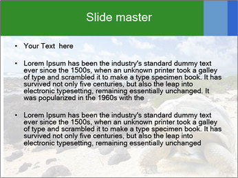 Rocks And Turtle PowerPoint Template - Slide 2