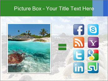 Rocks And Turtle PowerPoint Template - Slide 21