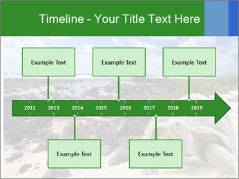 Rocks And Turtle PowerPoint Template - Slide 28