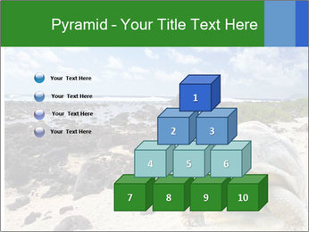 Rocks And Turtle PowerPoint Template - Slide 31